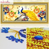 Drill Shiny Special Shaped Diamond Painting Peacock DIY 5D Embroidery Animal Cross Stitch Different Size Diamonds