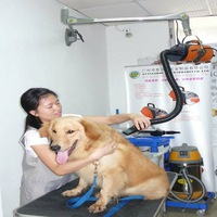 Pet Dryer With Low Noise And Easy To Operate Large Volume Pet Shop Dedicated Arm Hanging