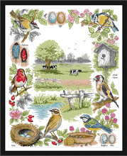 Joy Sunday,birds,cross stitch embroidery set ,printing cloth kit,needlework,bird pattern kit,