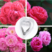 TTLIFE 3pcs Rose Petal Cookie Cutter Flower Stainless Steel Biscuit Mold Sugarcraft Pastry Fondant Cake Baking Decorating Tools ttlife 3pcs geometry cookie cutter rectangle fondant cake biscuit mold sugarcraft decorating tools pastry dessert baking moulds