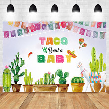 Mexican Baby Shower Backdrop Taco Bout a Party Photography Background Vinyl Fiesta Theme Backdrops