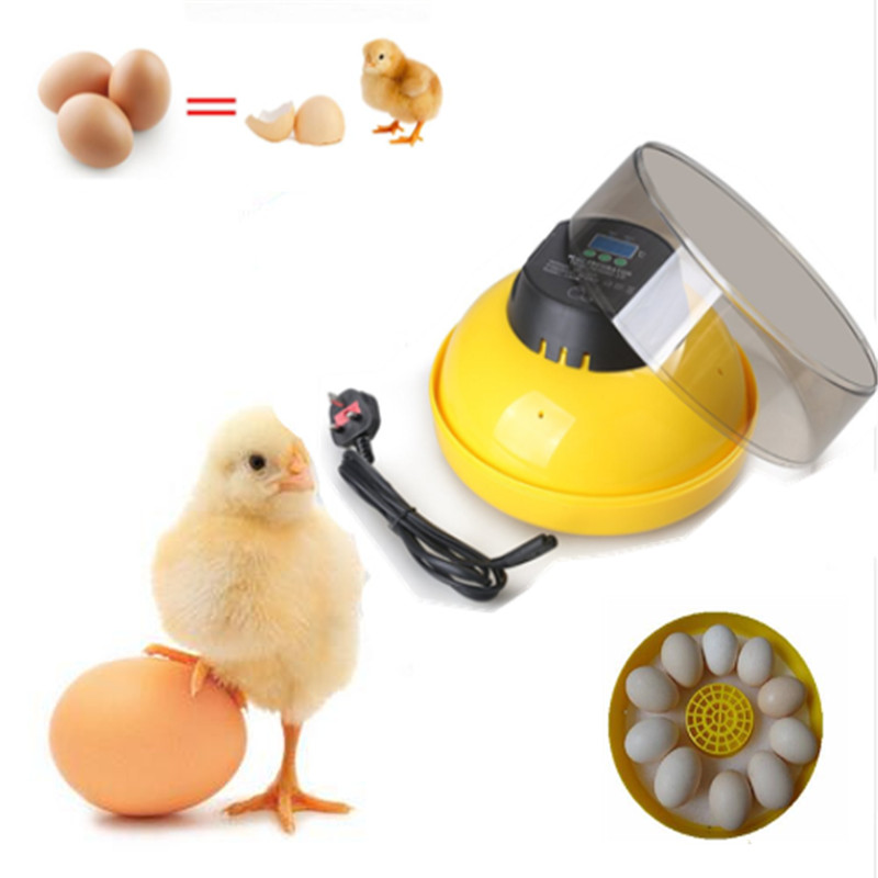 Cheap Price 10-Eggs Incubator Manual Controller for Chicken Duck Goose Hatching Machine Egg Tray Hatcher de warehouse cheap chicken egg incubator 48 eggs automatic equipment hatching machines