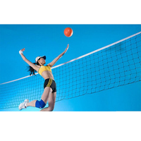 Professional Beach Volleyball Net with Steel Rope 2 Patterns Netting Replacement International Match Standard Official Game Size