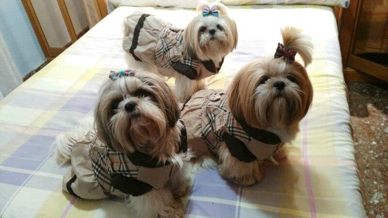 Классическое теплое клетчатое платье с принтом собак в шотландском стиле; зимняя одежда с подкладкой для домашних животных