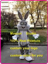 EAster bunny mascot costume easter bugs rabbit custom cartoon character cosplay mascotte 41546(China)