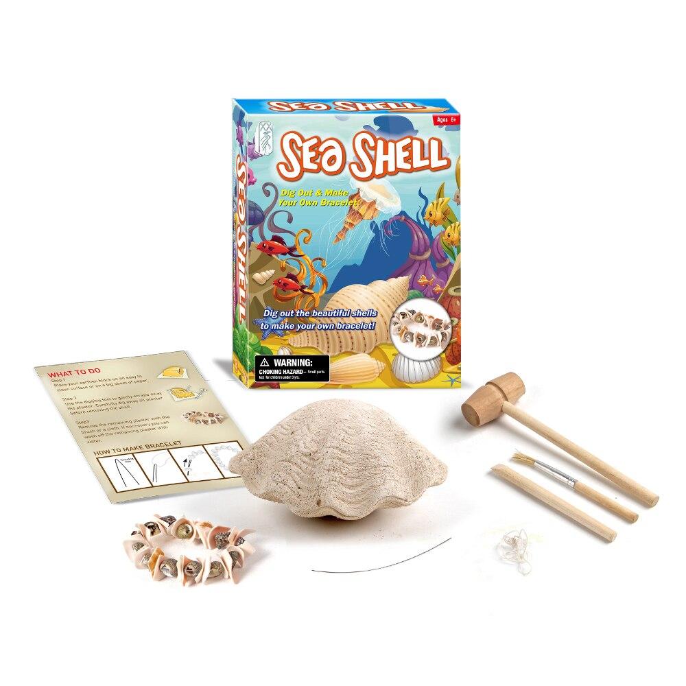 Surwish niños aprendizaje educativos Concha pulseras fósiles excavación juguete Kits con materiales ecológicos