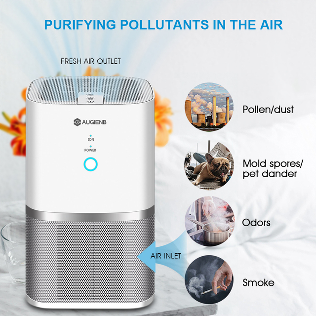 AUGIENB Air Purifier ionizer True Hepa Filter, Odor Allergies Eliminator for Smokers, Dust, Mold, Formaldehyde Home Pets Cleaner 1