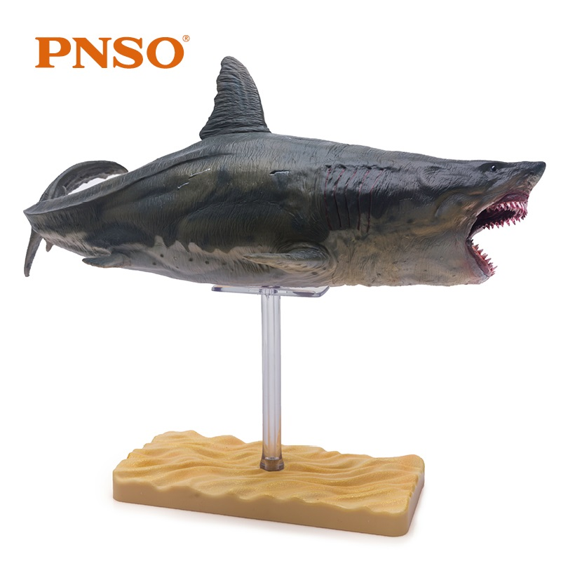 PNSO King Giant Tooth Megalodon Shark Simulation Animal Figure Toys Marine Life Model Children Boys