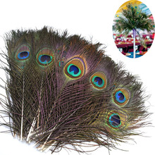 Top quality natural peacock feathers for Crafts Home vase decoration 20Pcs 25-32CM DIY jewelry Party clothing plumes Accessories