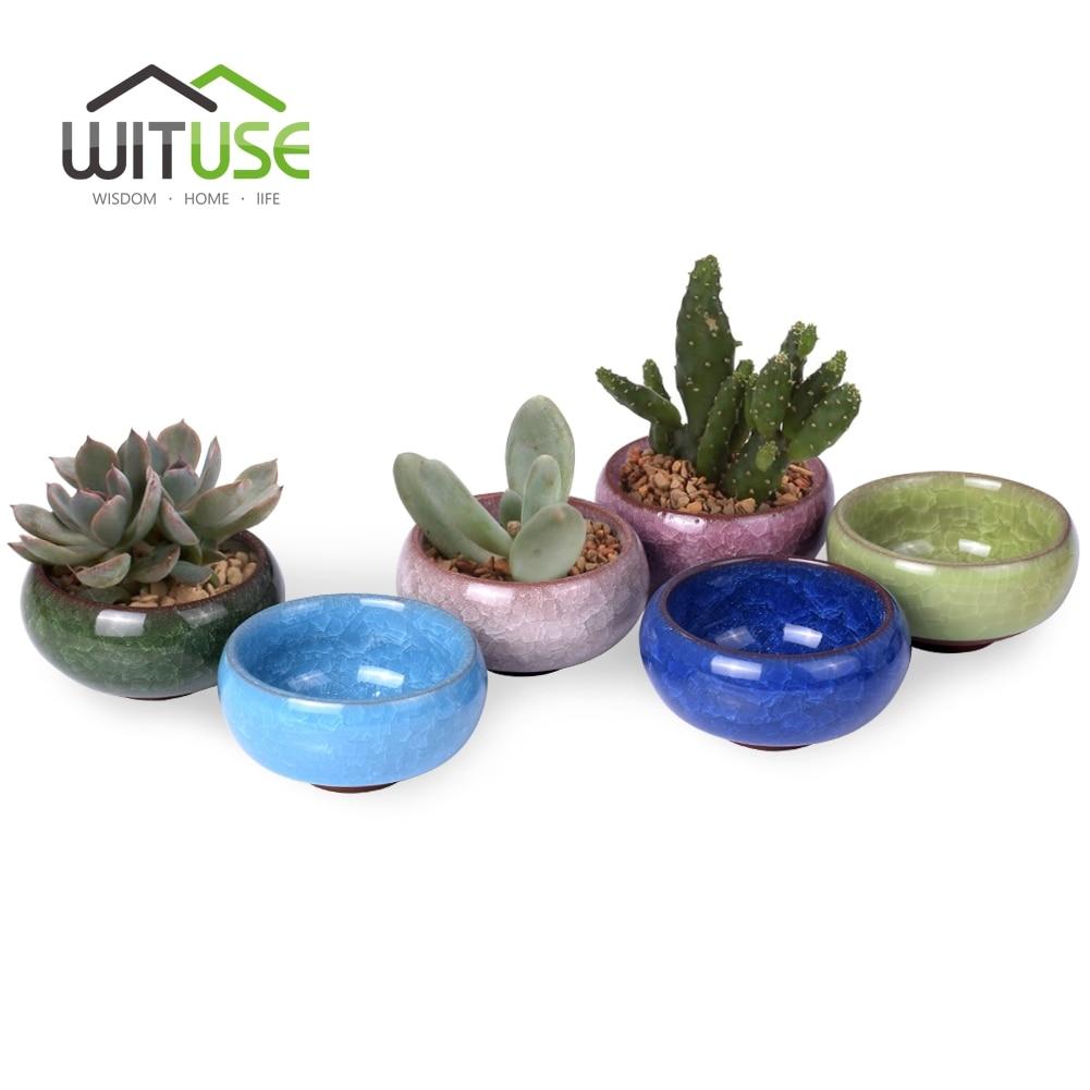 Lovely ceramic cactus bonsai mini size 6 4 micro for 6 ceramic flower pots