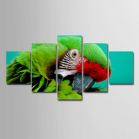 Parrot Pictures painting Animal image wallpaper canvas painting Birds Picuture 5 pieces for living room Big size Spray paintings