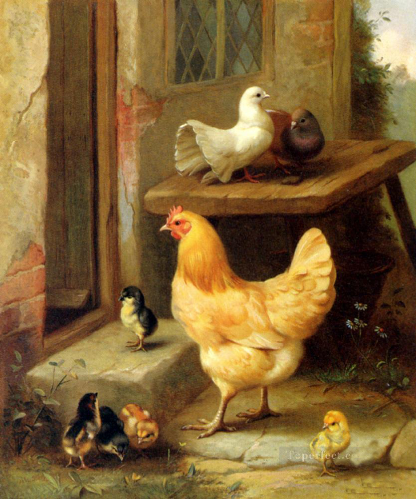 Animal painting a hen chicks and pigeons farm animals for Animals decoration