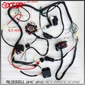 Wire Loom Key Solenoid Magneto Coil Regulator CDI 150cc 200 250cc ATV Quad Bike
