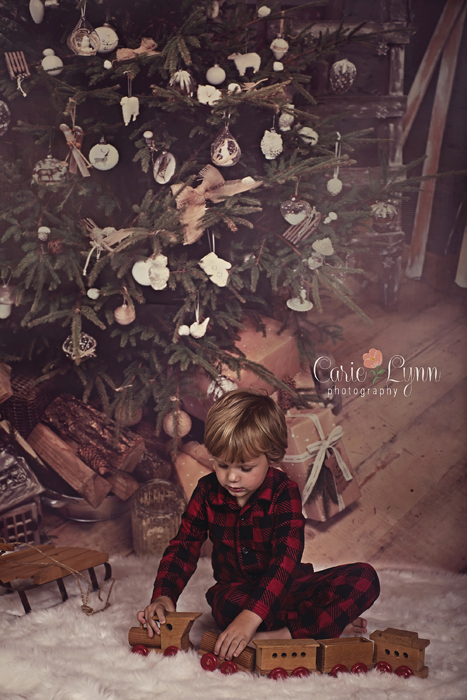 5x8ft free shipping Christmas backdrops Customized computer Printed vinyl photography background  for photo studio st-358 free shipping 6 5 10 ft children photography background christmas backdrops photography vinyl backdrops for photography sd16