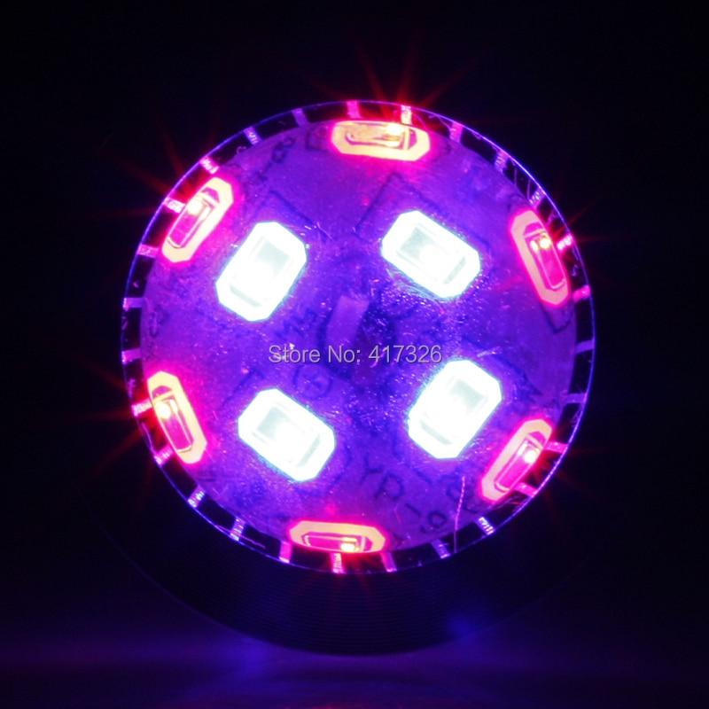E27 E14 GU10 7W Svjetiljka za uzgoj biljke 6Red: 4Blue LED svjetlost - Profesionalna rasvjeta - Foto 4
