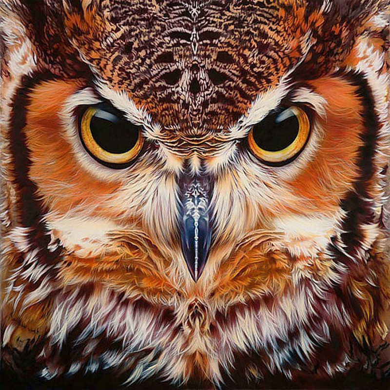 "100% Full 5D Diy Daimond Målning ""OWL Face"" 3D Diamantmålning Full Round Rhinestones Diamant Painting Broderi Animal Decor"