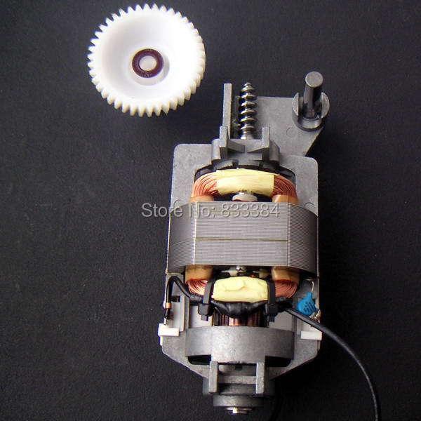 JOHNSON Motor excited motor DC/AC Motor With vortex reducer high speed full powerJOHNSON Motor excited motor DC/AC Motor With vortex reducer high speed full power