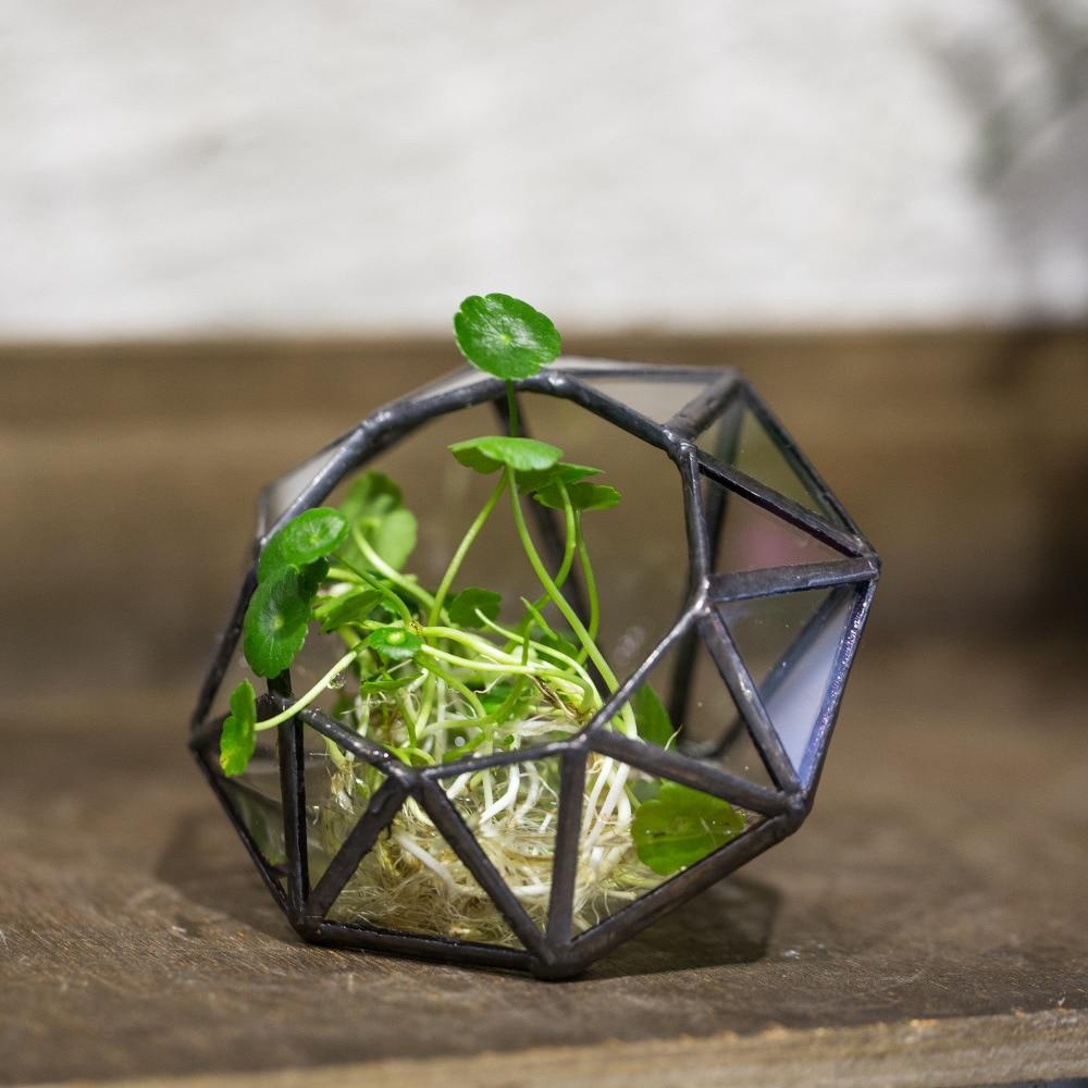 Moderne Künstlerische Microscape Acht-oberflächen Diamant Glas Geometrische Terrarium Sukkulenten Fern Moos Bonsai Blumentopf
