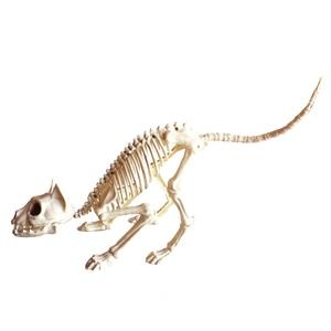 Image 2 - שלד חתול 100% פלסטיק בעלי החיים שלד עצמות מפחידים ליל כל הקדושים קישוט