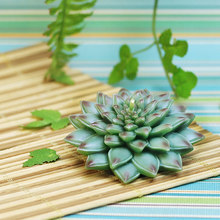 Creative Wedding Candle Succulent plant candle Surprise gift(China)