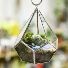 Modern Artistic Tears Shape Diamond 3MM Thick Clear Glass Geometric Polyhedron Terrarium Wall Hanging Air Plants Planter Holder
