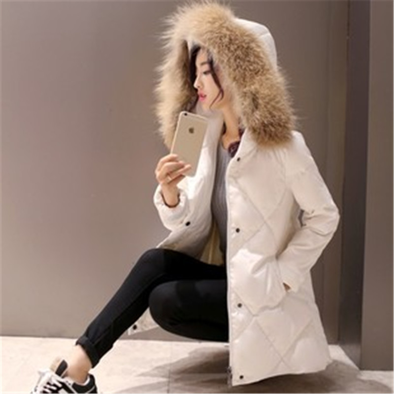 2015 New Women Winter Coat Fashion Raccoon Fur Collar Warm Jacket Woman Long Outerwear Thicken Parkas LJ3419