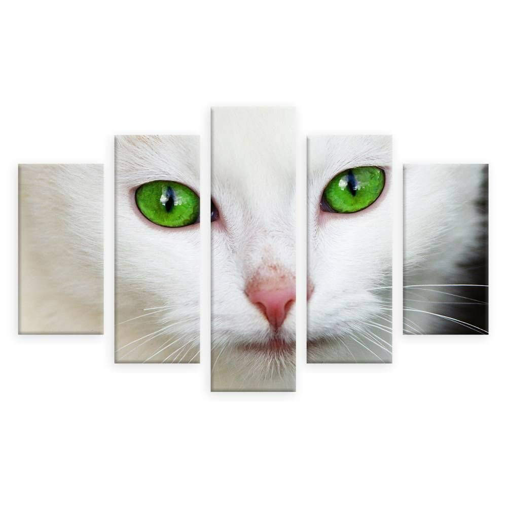 Printed Modular Picture Large Canvas 5 Pieces Animal Cat Framework Painting For Bedroom Living Room Home Wall Art Decoration in Painting Calligraphy from Home Garden