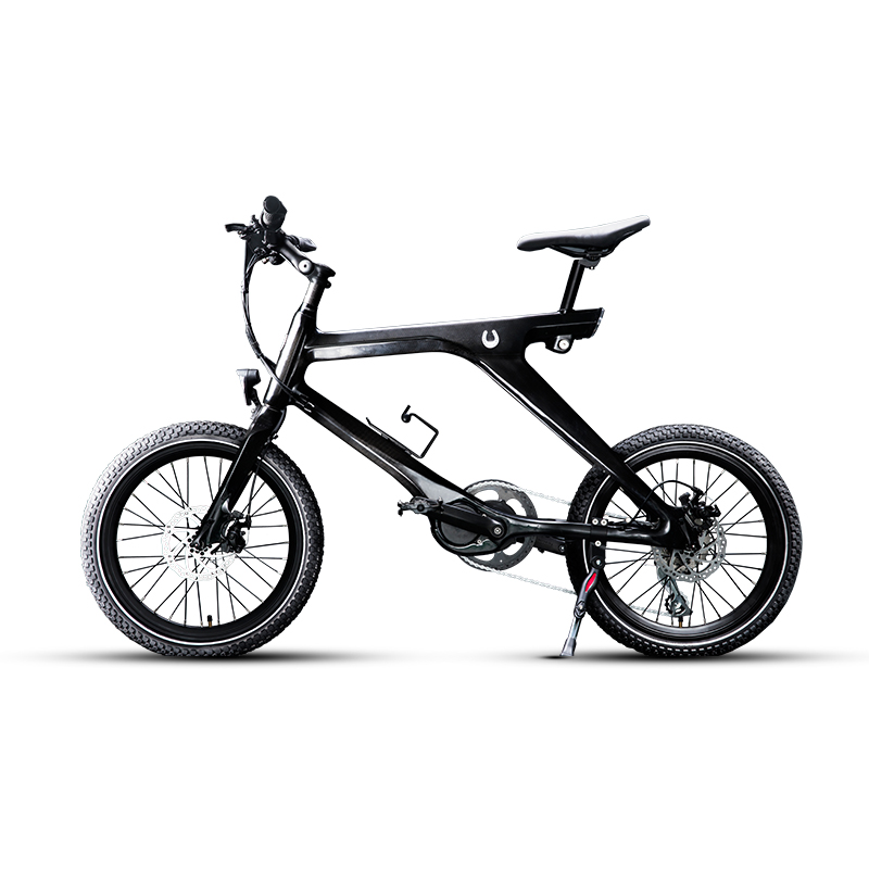 Carbon fiber version of smart power electric bike carbon fiber frame front fork torque motor lithium battery double disc brake