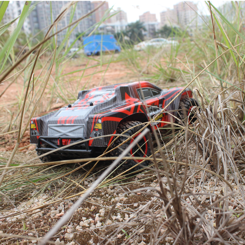 remote control cars IMG_4052
