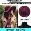 2012 Fashion Women S Woolen Cap Female Hats Cashmere Large Brim Hat Formal Fedoras