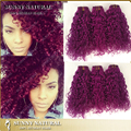 Top 7A Brazilian Curly Virgin Hair 3Pcs Lot purple Color Brazilian Afro bebe baby Curls 100 Human Hair Curly Weave fast shipping