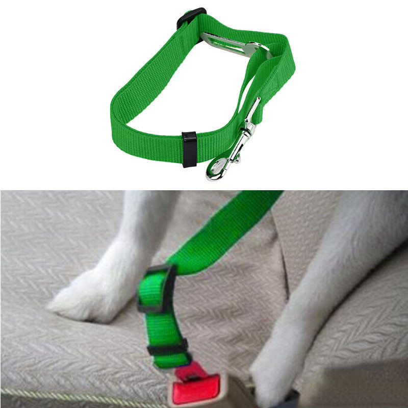 dog leash that clips into seatbelt