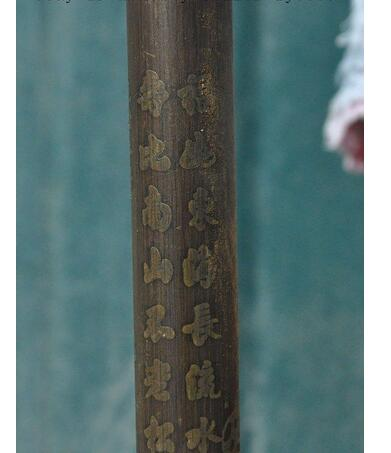 ROSA: Chinese Kakek