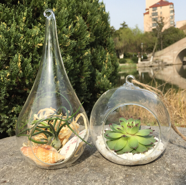 2pcs/set 10cm Globe terrarium and teardrop planter pot,moss succulent  indoor plant for - Aliexpress.com : Buy 2pcs/set 10cm Globe Terrarium And Teardrop