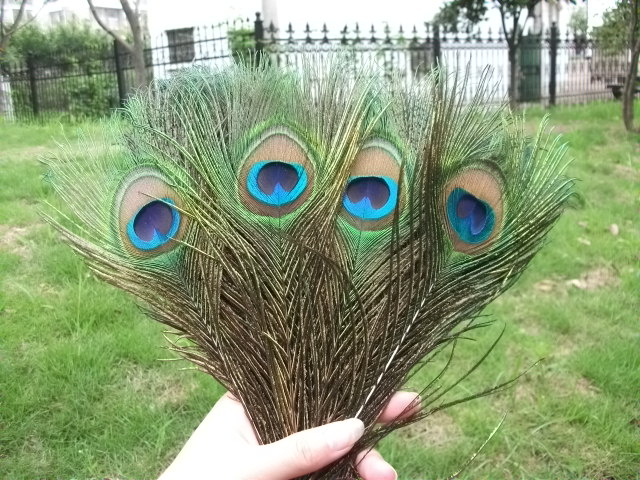 25-30 cm natural color Wholesale 10-100pcs Peacock feathers eye 10-12 inches