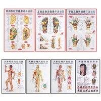 7 Pcs Chinês e Inglês cartazes de moxabustão e moxabustão em pontos de acupuntura e os meridianos da medicina tradicional Chinesa