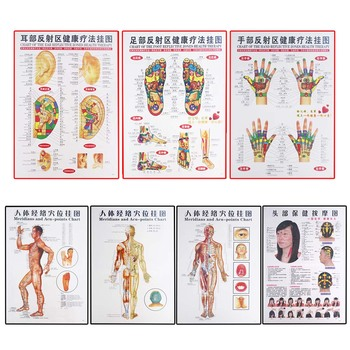 7 Pcs Chinese And English Posters Of Moxibustion And Moxibustion On Acupoints And Meridians Of Traditional Chinese Medicine