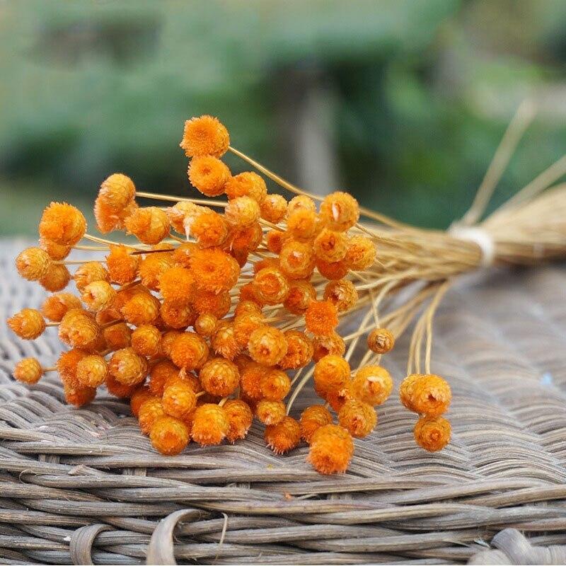 50 unids / lote decoración para el hogar ramo de flores secas flores - Para fiestas y celebraciones - foto 5