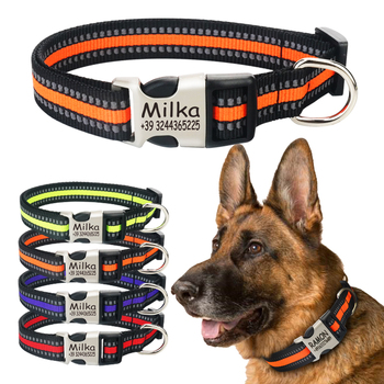 Nylon Personalized Engraved Dog Collar