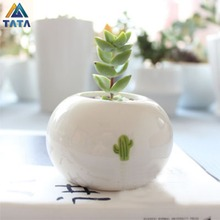 TARTADECO Free Shipping Kawaii Mini European Style Ceramic Flower Pot Vase Succulent Plants Circular Bonsai Planter TT-CFP-007