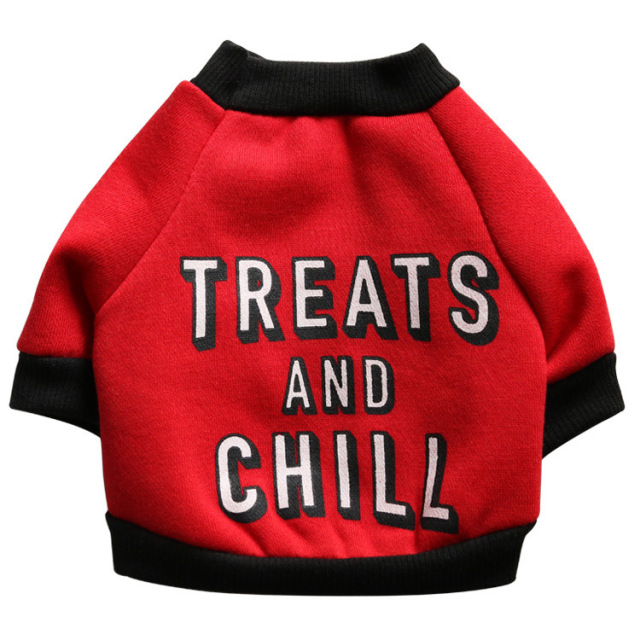 Letters Sweater for Small Dogs