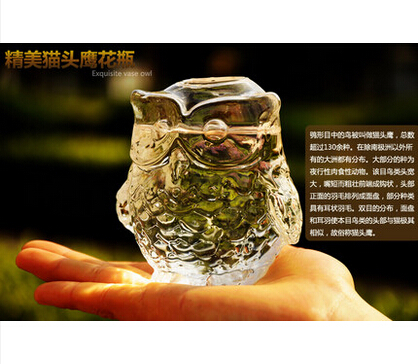 European creative owl crystal glass vase A hydroponic flower implement Rural household decorative arts and crafts