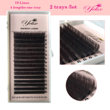 Extension Color Eye Lash Brown Net Wimpern