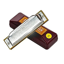 Suzuki Harmonica Folk master Standard 10-Hole Diatonic Harmonica Key of C Blues Harp mouth organ 1702 sliver color with case