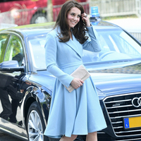 Kate Middleton Princess Women coat2017 New Long Sleeve Turn-Down Collar Pleated coat E16888