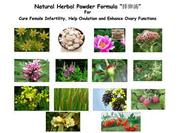 Natural Herbal Powder Formula For Cure Female Infertility, Help Ovulation and Enhance Ovary Functions