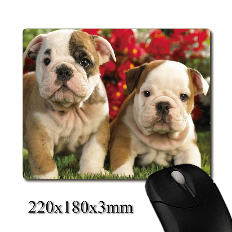 US $4 99 |Two cute baby english bulldog Puppies printed Heavy weaving anti  slip rubber pad office mouse pad Coaster Party favor gifts-in Party Favors