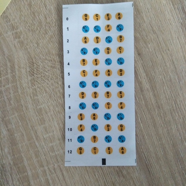 Guitar Fretboard Note Stickers
