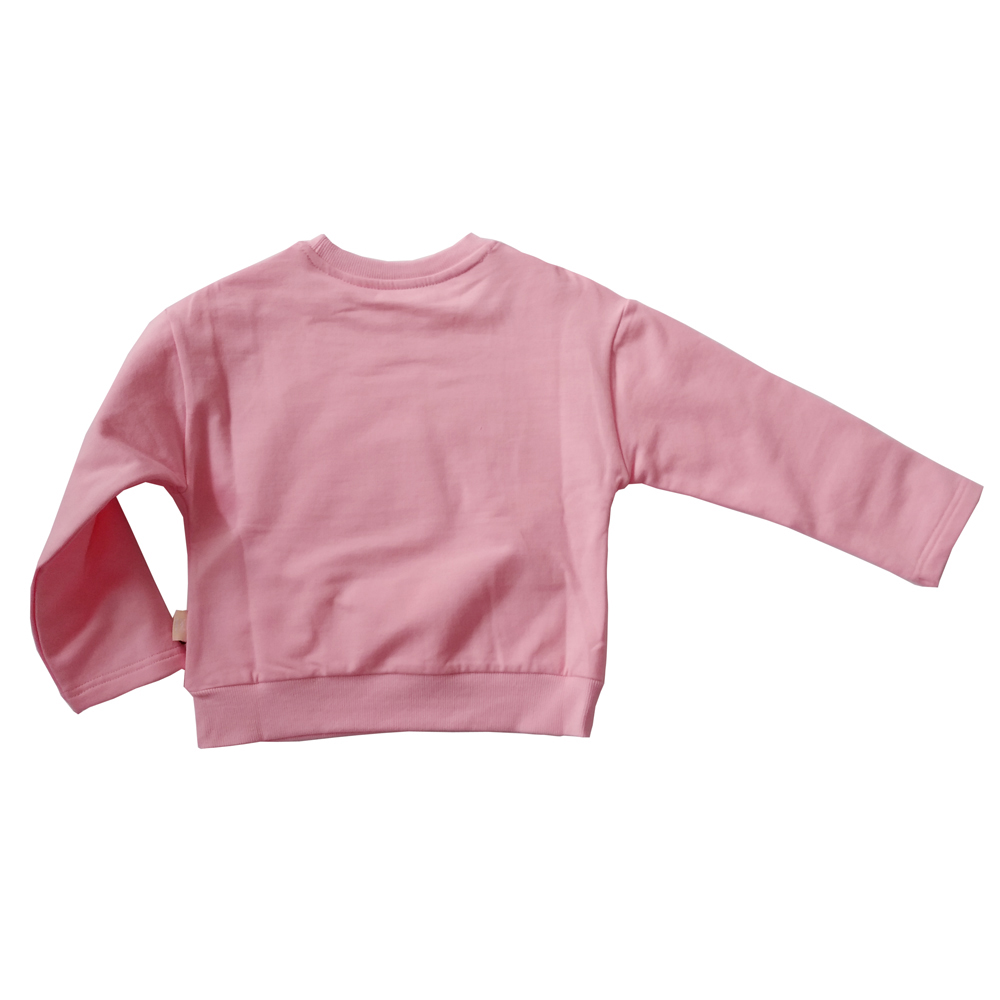 AD Cute Unicorn Baby Girls Sweatshirts Fleece Thickening Thermal Girls Tops 100% Cotton Children's Clothing and Accessories