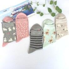 Women Socks Cotton Harajuku Creative Happy Funny Cartoon Animal Lovely For
